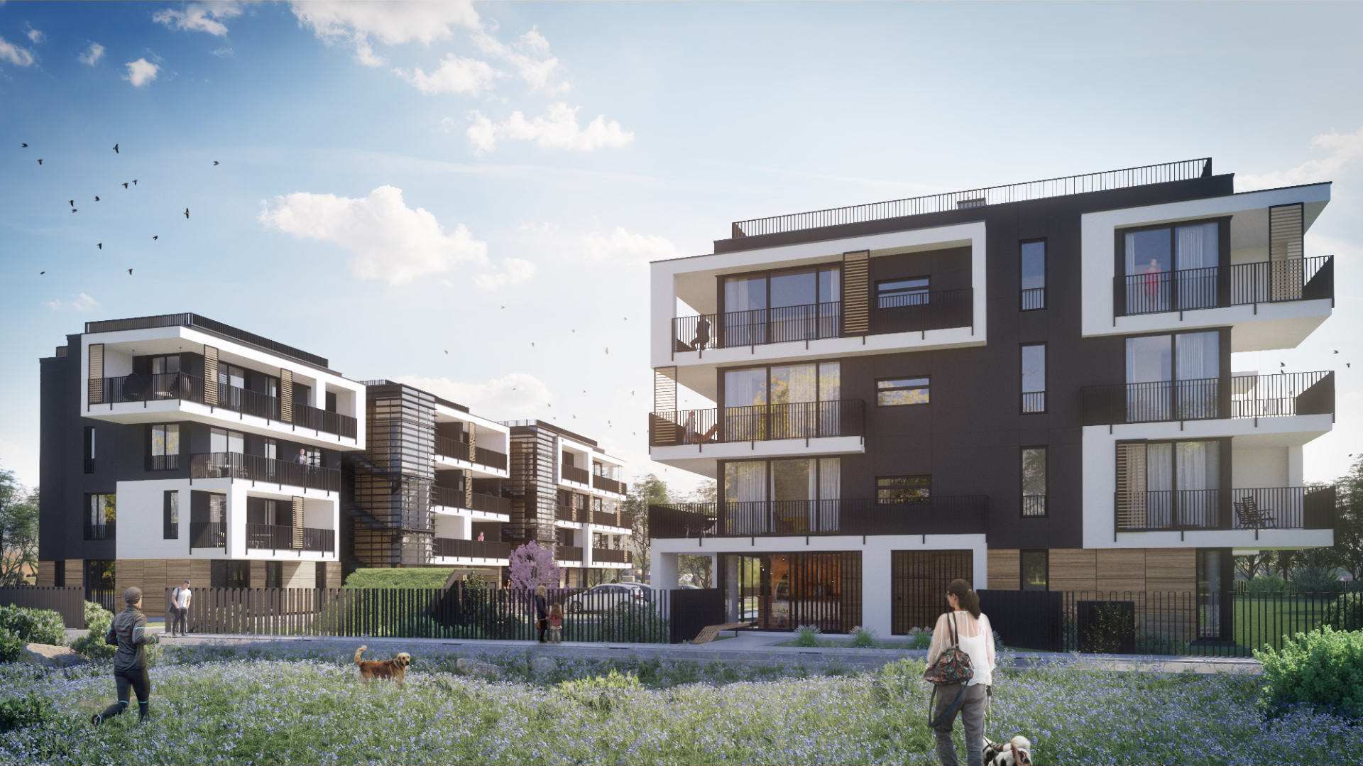 3D visualisation showing a housing development - exterior day
